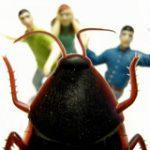 Böcek Fobisi