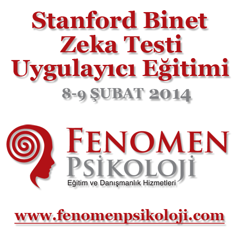 Stanford Binet Zeka Testi Uygulayıcı Eğitimi